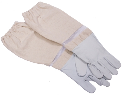 Leather Gloves.jpg
